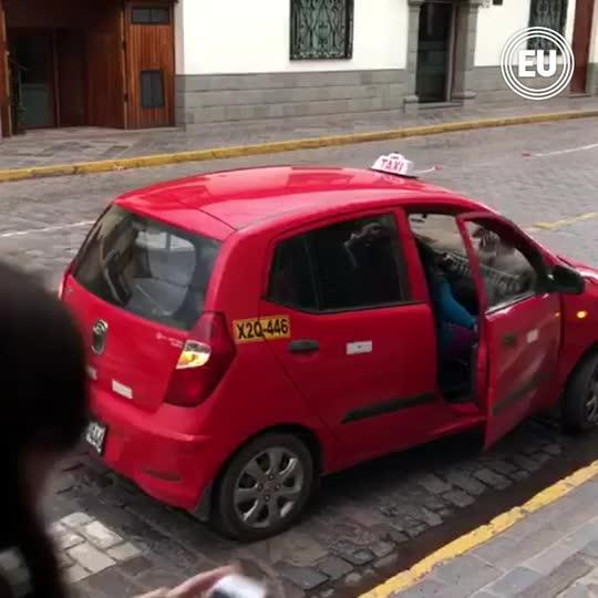 Llama sube a un taxi en Perú