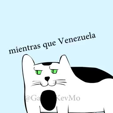 El Politigato #22 Venezuela Vs. USA